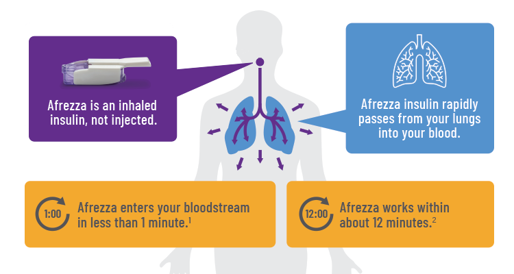 Afrezza Lungs Inhaler2