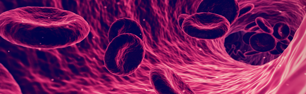 Red Blood Cells A1 C Header